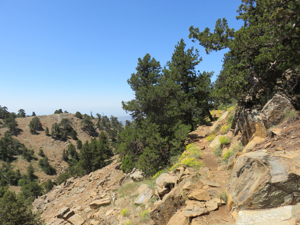 Troodos Mountains – some incredible trail running was had!